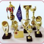 награды по испытаниям 2