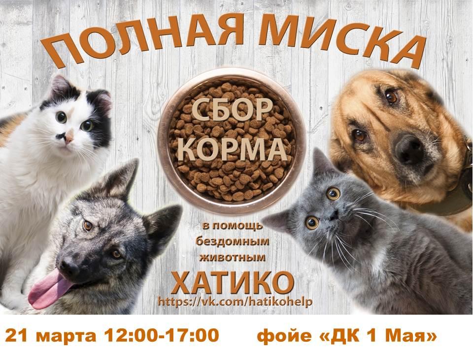 Хатико_21.03.2021